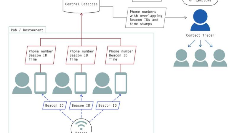 Diagram showing individuals' phones receiving beacon IDs from a beacon and sending those on to a central server along with phone numbers and times. The central server can be sent a phone number by a contact tracer and will return all the phone numbers of people who were exposed to the same beacon at the same time